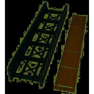 Piccolo Genio Anatomia del Corpo Umano