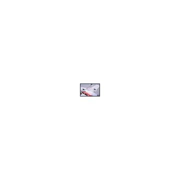 Animali della foresta H0